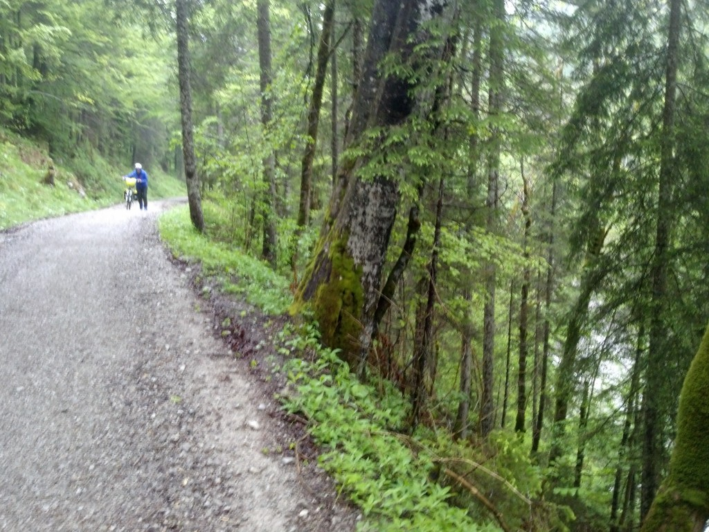 Forest road headed to Lake Plansee from Garmisch