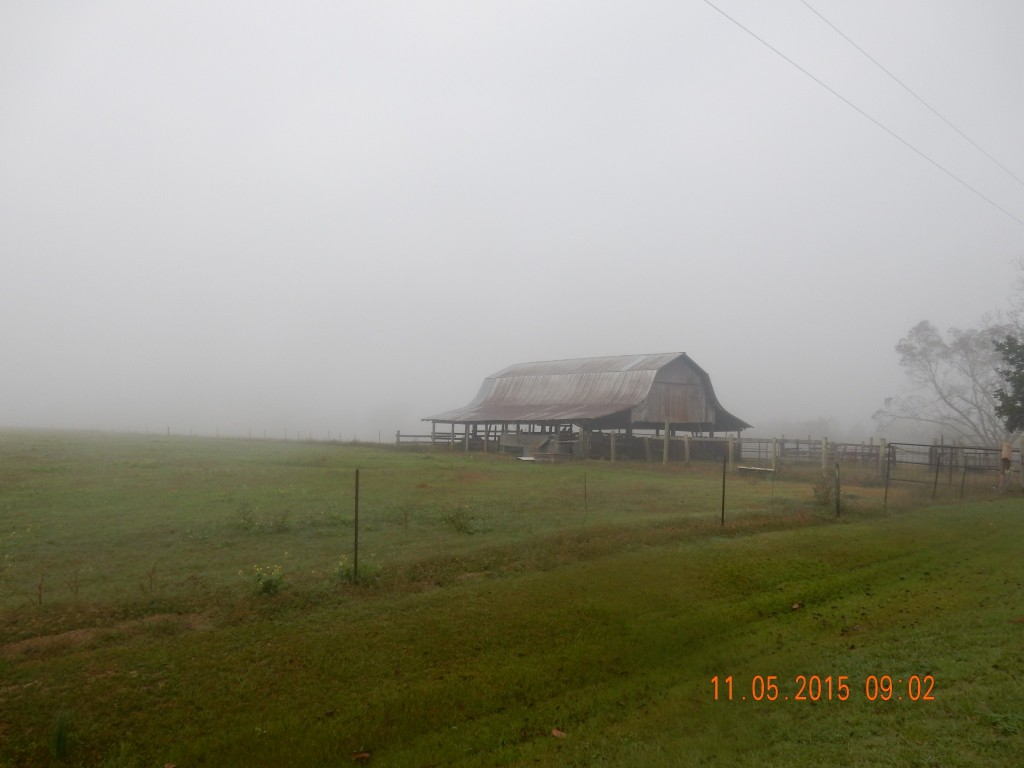 Leaving Poplarville in the fog