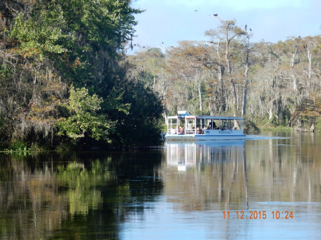 The boats at Wakulla Springs