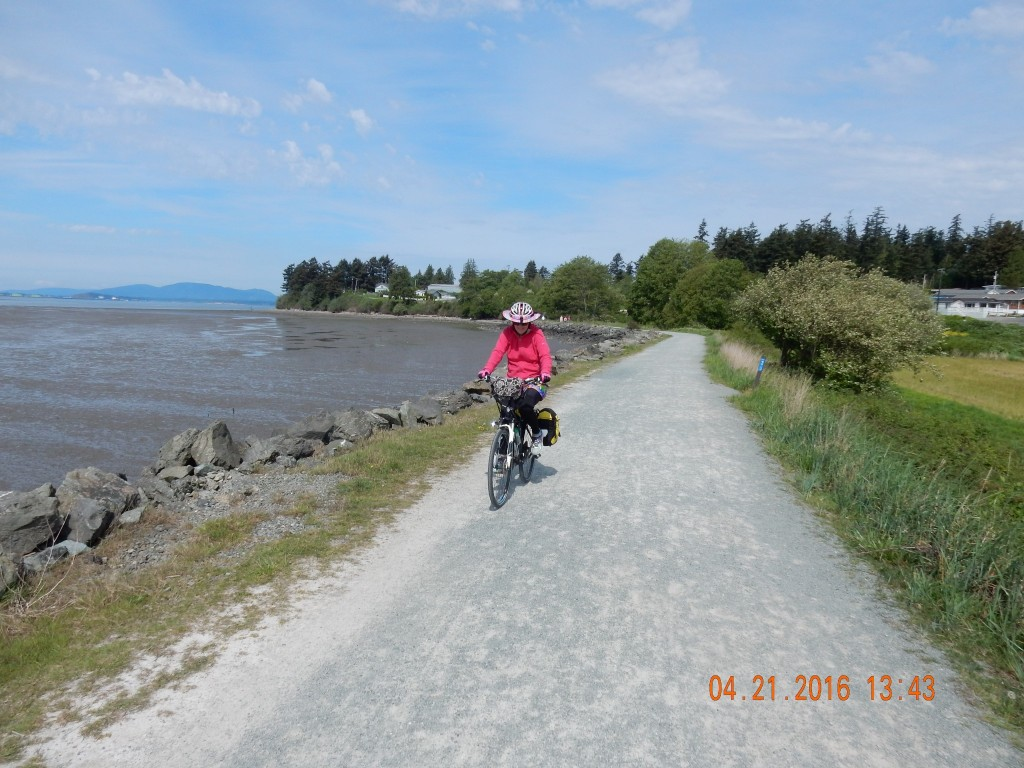Padilla Bay Shore Trail, estuary on one side, mud flats on the other