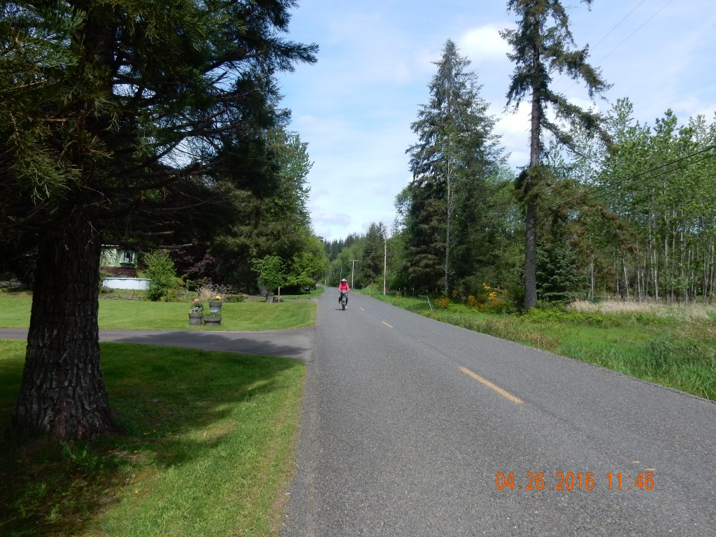 Cycling on Cloquallam Creek Road