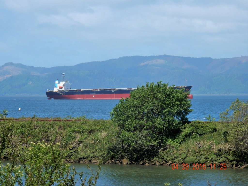 View from the Riverside Trail, Astoria, Oregon
