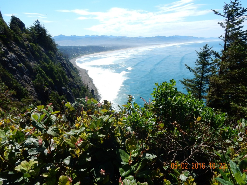 Scene from the top of the third hill today, looking down on Manzanita