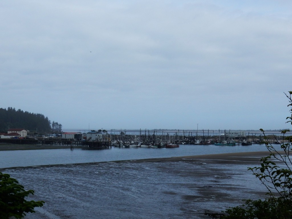 Low tide in the South Slough, Charleston OR