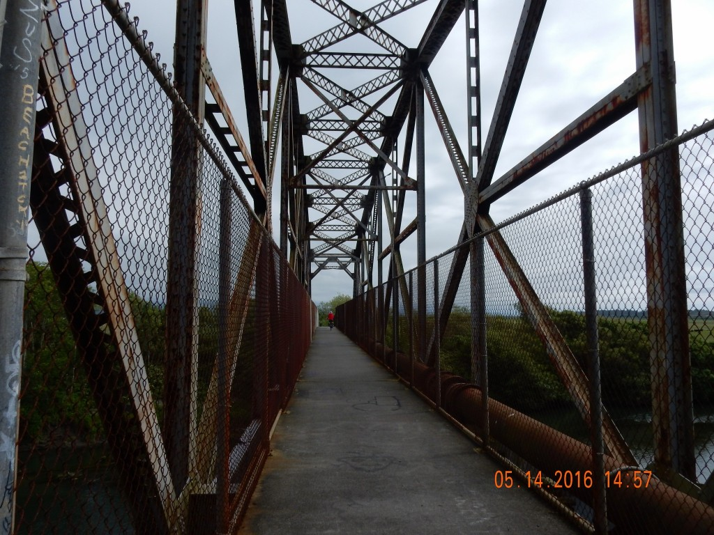 Trestle trail bridge