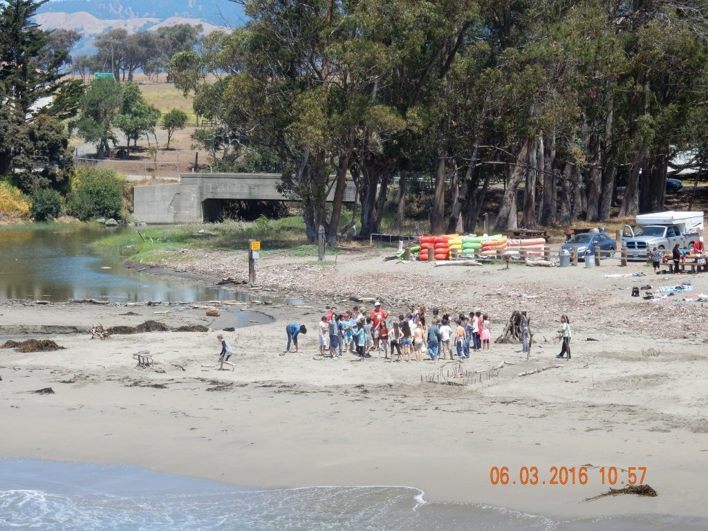 Students participating in Coastal Discovery