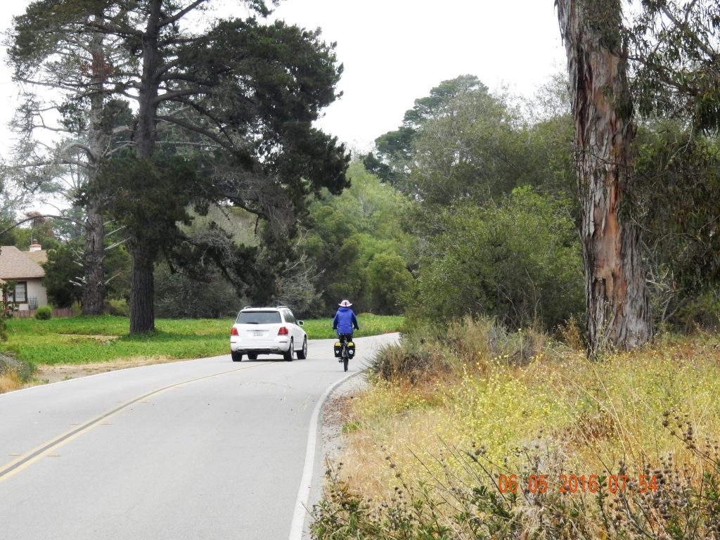 Cycling through Morro Bay State Park
