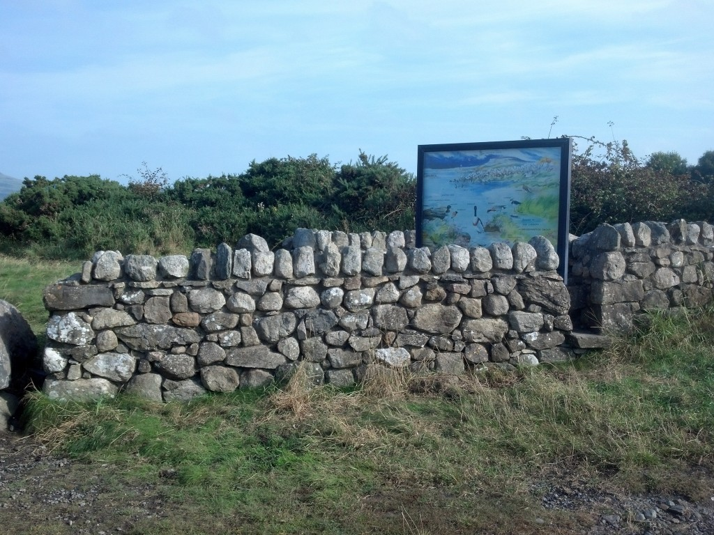 Cousin Eamon constructed this stone wall for the Bird Sanctuary, near Streamstown