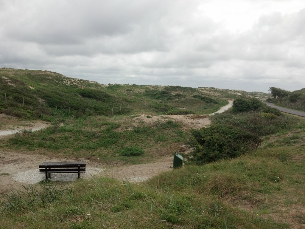 Cycling through the dunes between Katwijk and Nordwijk