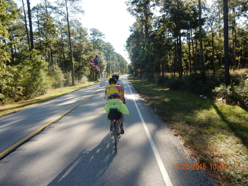 Cycling through Sam Houston National Forest