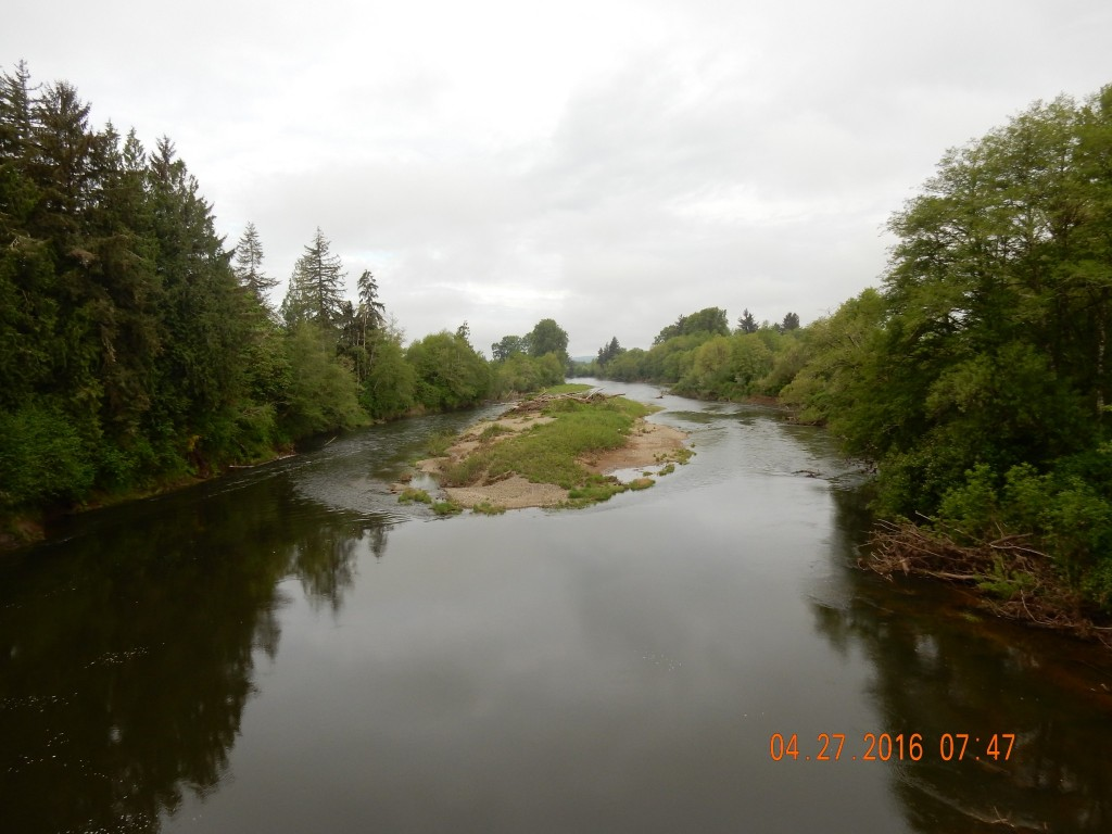 Chehallis River outside Elma, Washington