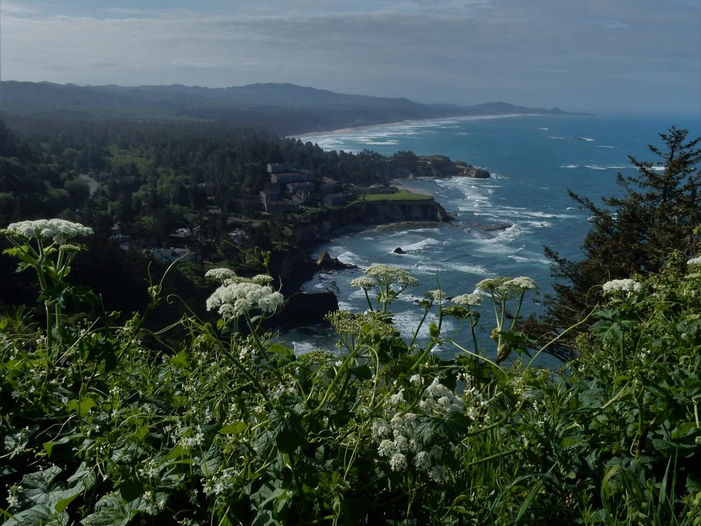 Looking down on Agate Beach from Cape Foulweather
