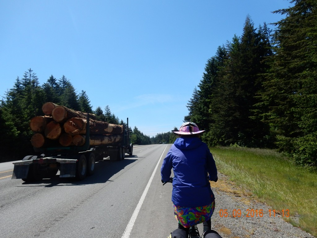 "Spent the day on busy highway 101. Being in the Pacific Northwest, there were ""fir"" too many trucks!"
